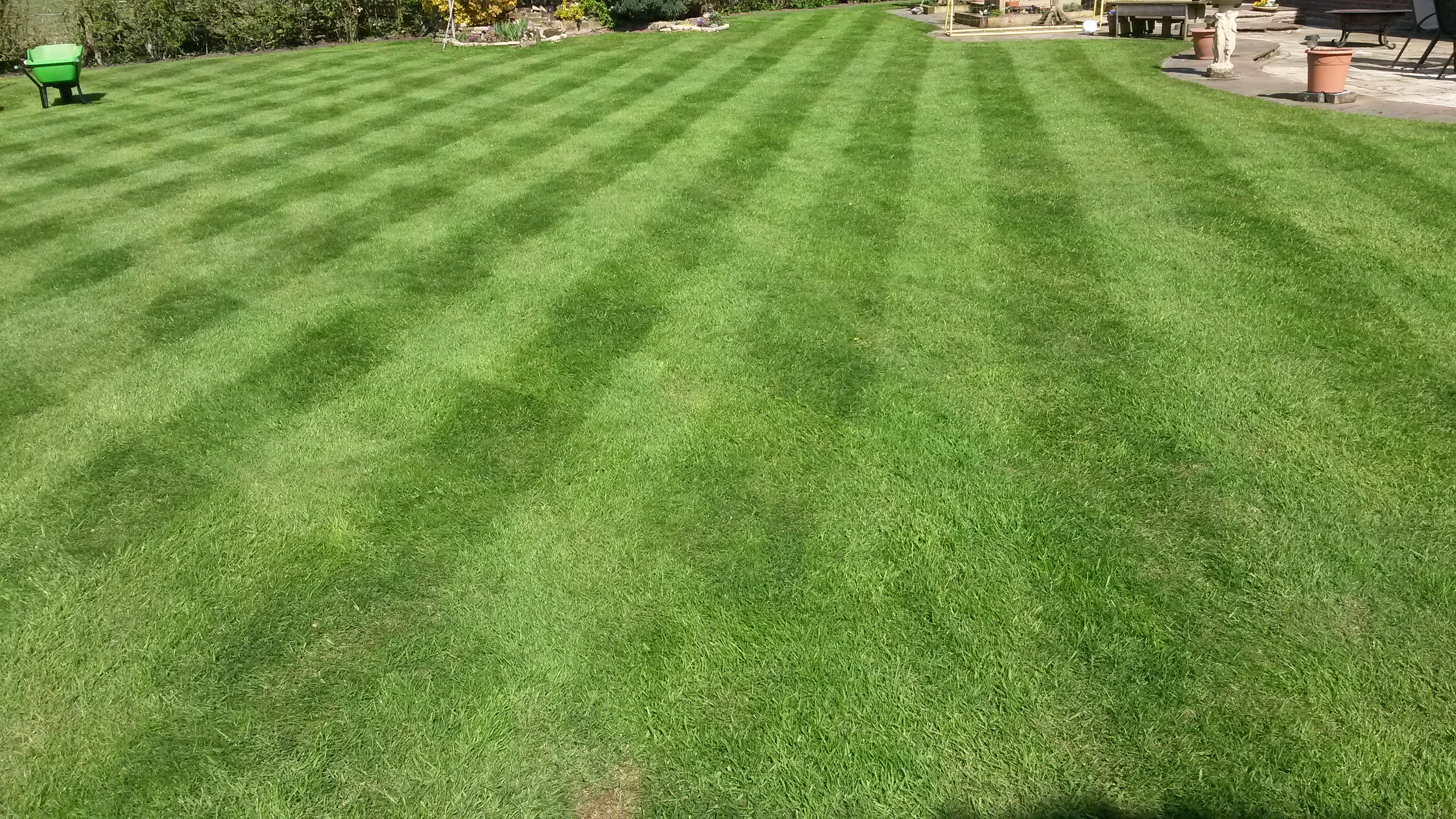 TLC at Lower Leigh (after scarifying)