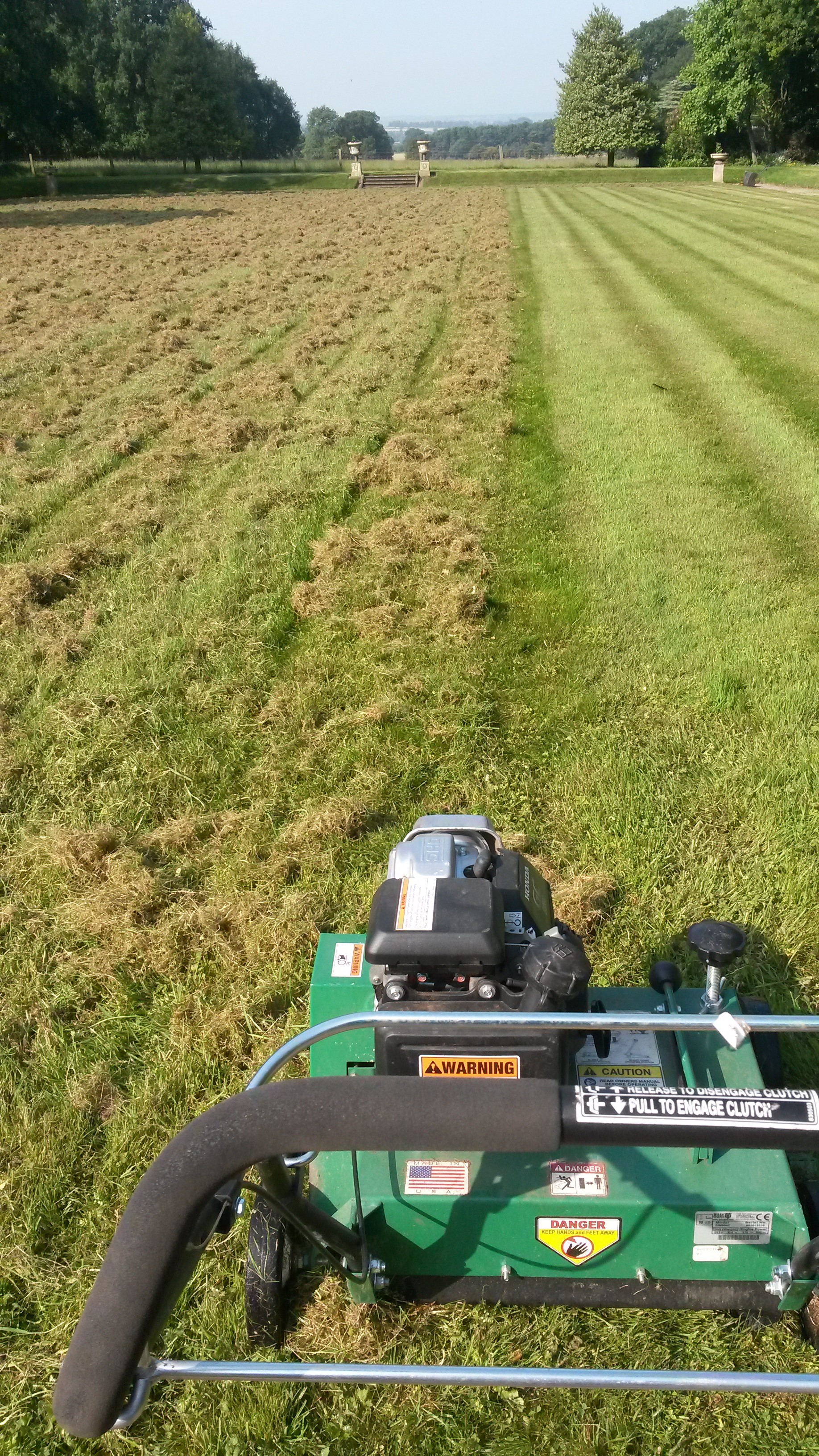 TLC scarifying Radbourne