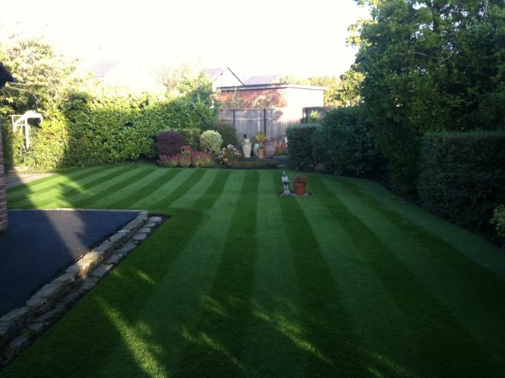 lawn photo 4