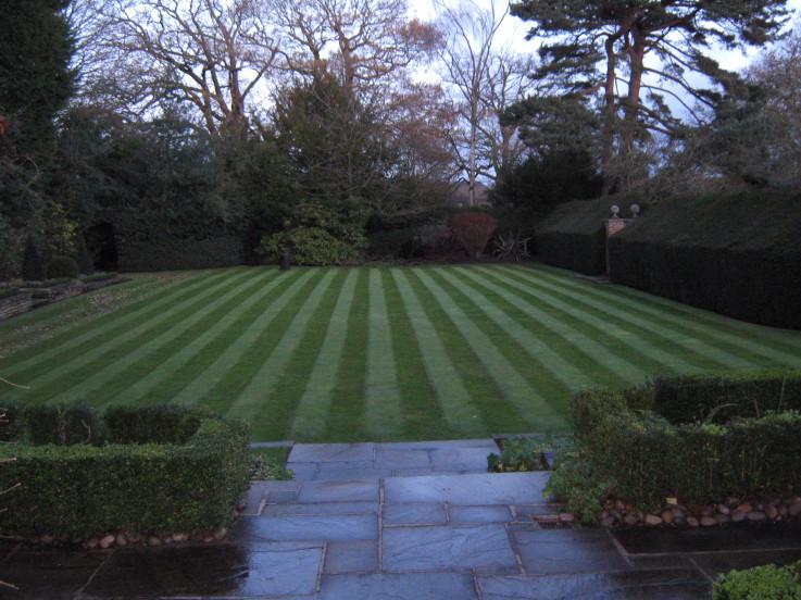 lawn photo5