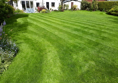 top-lawn-company-staffordshire-caring-for-your-lawn-05