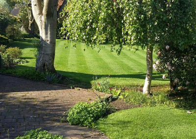 top-lawn-company-staffordshire-caring-for-your-lawn-08